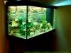 300 litru ar 270 litru akvariumo instaliacija