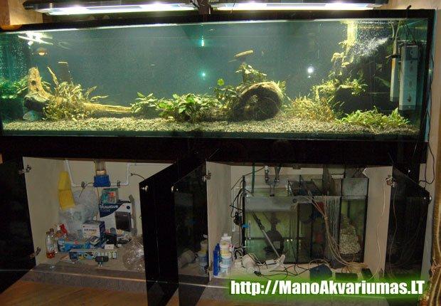 3000 litru akvariumas su sumpu ir filtracija